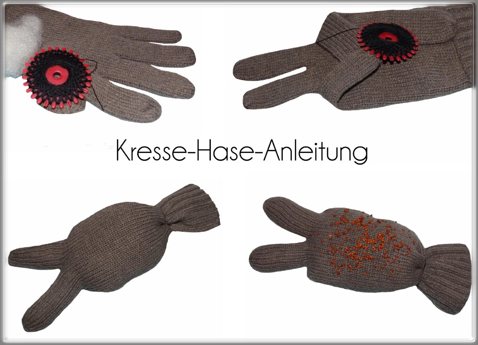 DIY Anleitung Kresse Hase Bastelanleitung Anleitung